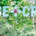 Rose-Croix : Printemps 2013